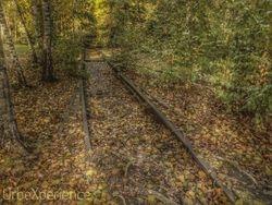 Lost trains & tracks